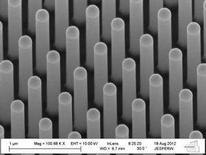 Nanodrähte: Wald unter dem Mikroskop (Foto: Wallentin et al.)