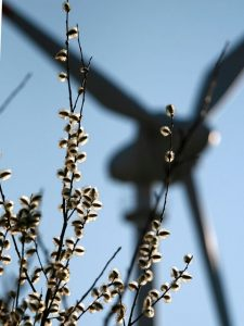 Erneuerbare Energien2kl