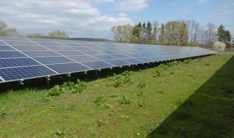 Ein Solarpark im Kornfeld