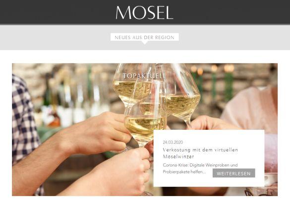 Innovative Verkostungs-Möglichkeiten durch Online-Präsentationen von Moselweinen in Corona-Zeiten - Screenshot: DeinEnergieportal